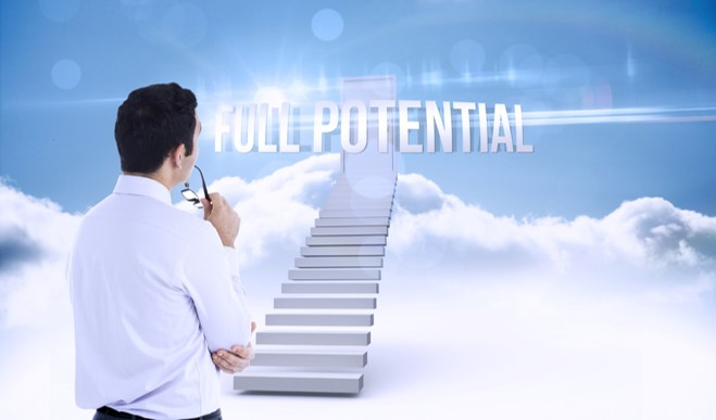 business optimisation full potential